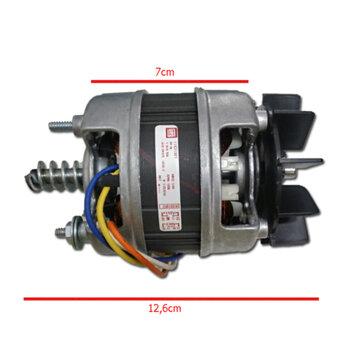 Motor para Churrasqueira Giratória Giragrill Biv 1/30cv Eixo 8,0mm c/Ventoinha c/Rosca Sem Fim SEM caneco SEM capa plástica - Serve para GiroKit
